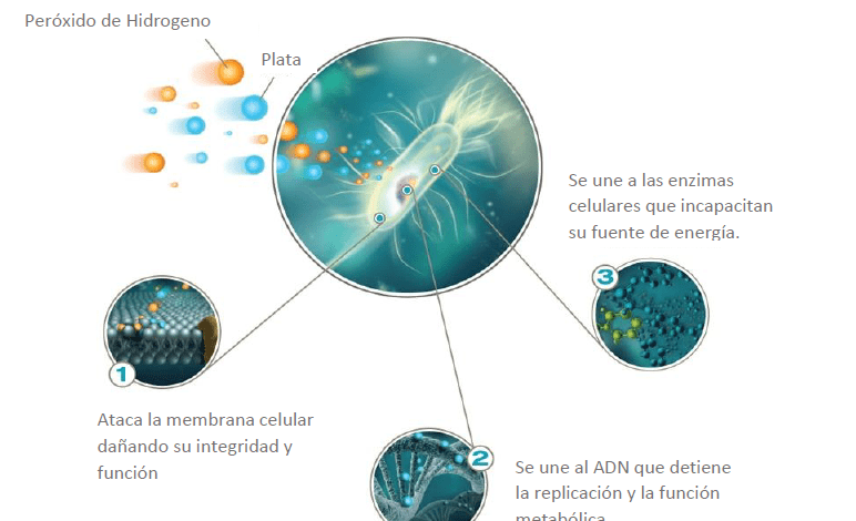 peróxido de hidrógeno tecnobio desinfección de superficies y aérea